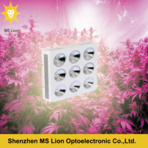 Hydroponic Systems 1800W COB LED Grow Lights pictures & photos