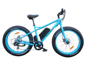 Fat Tire 26 Inch Mountain Electric Bike/Lithium Battery Bike/20 Inch Bike/Mountain Bicycle pictures & photos