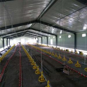 Qingdao Superherdsman Prefabricated Poultry Farm Construction pictures & photos