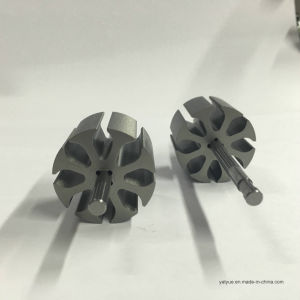 Top Quality Motor Parts Rotor pictures & photos