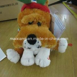 Inspection Service/Final Inspection /QC Inspection for Toy & Gift pictures & photos