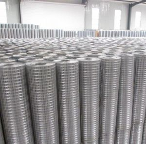 Welded Wire Mesh/ Galvanized Welded Wire Mesh/ Wire Mesh Fence pictures & photos