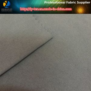 New Design Heavy Nylon Spandex Fabric, Nylon Taslon Oxford Fabric (R0134) pictures & photos