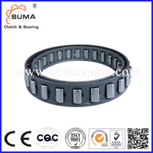 Sprag Type Bw13161 Cam One Way Clutch pictures & photos