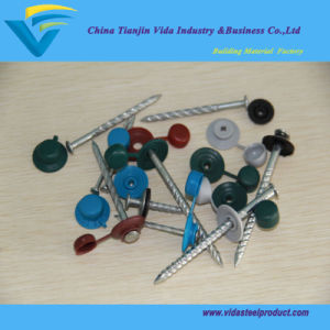 Roof Screw Nail with Neoprene Washer Nails pictures & photos