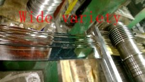 Stainless Steel Bands pictures & photos