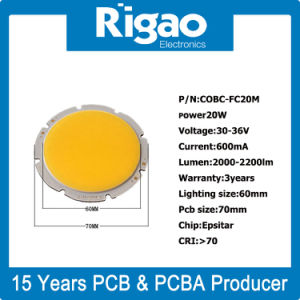 COB LED PCB for LED Garden Light pictures & photos