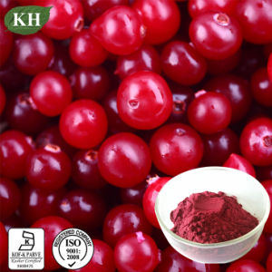 Cranberry Extract/Cranberry Powder; Proanthocyanidins 5%-60%, Anthocyanidins 10%-30% pictures & photos