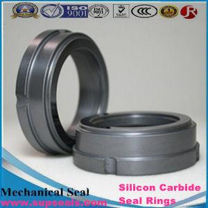 99% Translucence Alumina Ceramic Pump Seal Ring pictures & photos