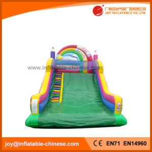 Amusement Park Toys Inflatable Rainbow Slide (T4-308) pictures & photos