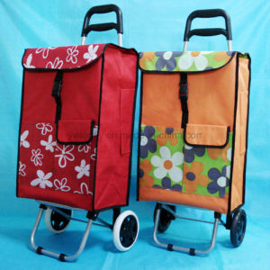 2 Wheeled Multifunctional Light Weight Folding Shopping Trolley Luggage Bag pictures & photos