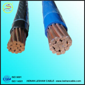 450/750V PVC Insulated and Nylon Sheathed Thhn Cable for Southern America pictures & photos