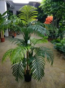 Outdoor or Indoor Use Artificial Plants of Palm Tree Gu20170216090038 pictures & photos