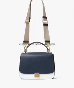 Brand Training Backpack Bag  Leather Handbags pictures & photos