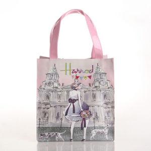 Small Size Pink Lady Pattern PVC Shoulder Bag (H008-11)