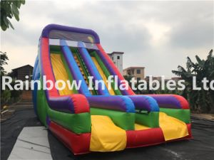 New Designed Double Lanes Inflatable High Slide pictures & photos