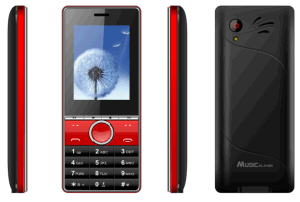 2.4inch Hot Mobile Phone Best Quality Cell Phone Cheap Price Cellular Feature Phone C21 pictures & photos