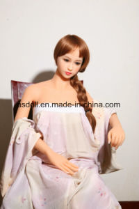 Agent Wanted Ce Certification 140cm Realistic Love Dolls pictures & photos