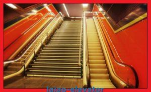 Otis Indoor Vvvf Control Type Escalator pictures & photos