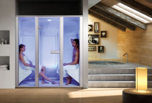 Family Using Hot Sale Acrylic Wet Steam Room 2b pictures & photos