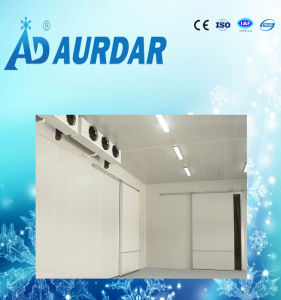 Cold Storage Room with Refrigerated System in Changzhou pictures & photos