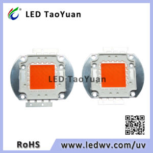 Grow Lighting LED Chip 30-100W Full Spectrum 380-840nm pictures & photos