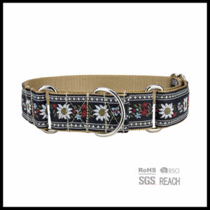 Martingale Pet Puppy Cat Dog Training Collar pictures & photos
