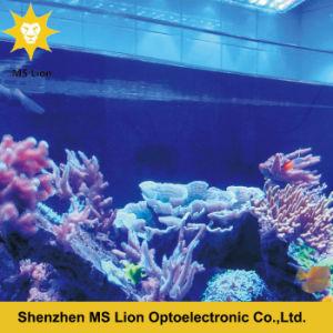 169W LED Aquarium Light COB Coral Reef Used LED Aquarium Light for Marine Use Full Spectrum LED Reef pictures & photos