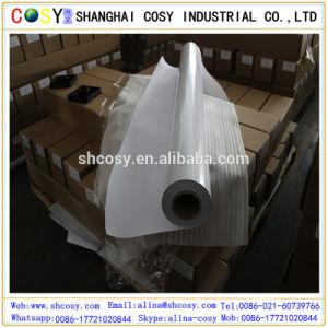 PVC Self Adhesive Vinyl / Vehicle Graphics Vinyl pictures & photos