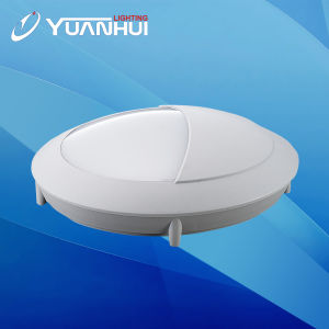 Round and Spuare Shape Oval Shape Ceiling Light pictures & photos