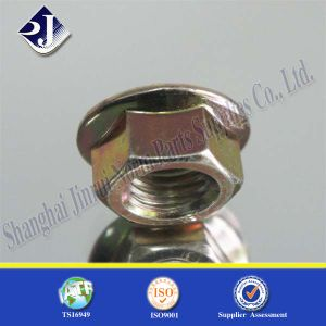 Nut 6923 Flange Bolt and Nut pictures & photos