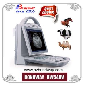 Veterinary Portable Ultrasound Scanner Cow Pregnancy, Battery, USG, Diagnostic Veterinary Ultrasonic Machine, Bcf, Ecm Vet Ultrasound pictures & photos