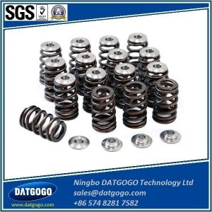 Titanium Retainers for Dual Springs pictures & photos