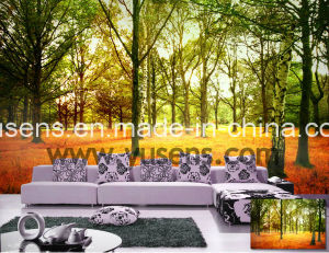 Wide Format Printing Poly-Straw Fabric Customized Wallpaper pictures & photos