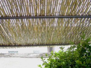 Cheap Bamboo Fence Designs pictures & photos
