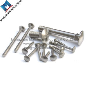 Hot Zinc Plated Carriage Bolt (DIN603) pictures & photos
