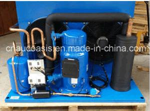 E407c/R134A Performer Scroll Compressor Sz300A4ABB pictures & photos