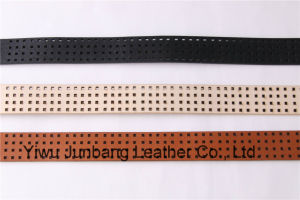 New Fashion Women Pierced Pattern Belts -Jbe1633 pictures & photos