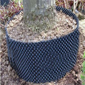Plant Root Control Device Pot for Greenhouse pictures & photos