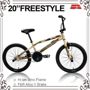 20 Inch Army Color Freestyle Bicycle (ABS-2032S-1) pictures & photos