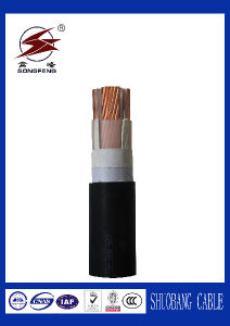 XLPE/PVC Insulated Power Cable 2X35mm2