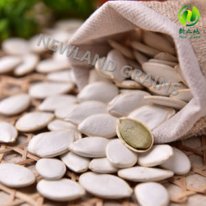 New Crop Dried Snow White Pumpkin Seeds with High Quality Origin of China for Wholesales pictures & photos