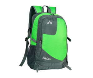 Ladies Travel Designer Fashion Backpacks for Men and Womens (BH-NH-16032) pictures & photos