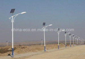 20W Solar Lights with Low Price Supply