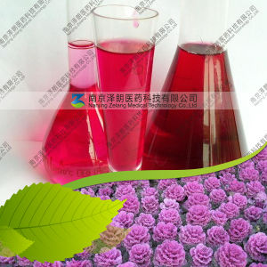 Manufacturer Supply Food Color Red Cabbage Pigment pictures & photos