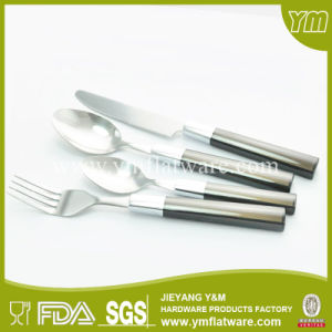 Simple Delicate Design Stainless Steel Plastic Handle Cutlery pictures & photos