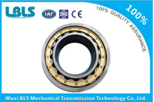 NSK Single-Row Cylindrical Roller Bearing  (NU220 NU220E NU220EM) pictures & photos