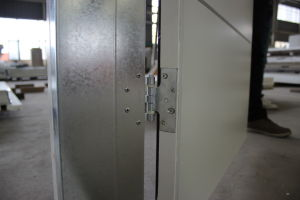 Modern Interior Steel Door with Aluminium Strips pictures & photos