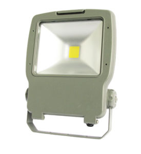 Expert Supplier of LED Flood Light pictures & photos