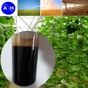High Organic Nitrogen Fertilizer Liquid Amino Acids Free From Chloridion pictures & photos